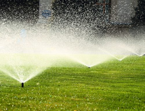 The Importance of a Spring Irrigation Audit